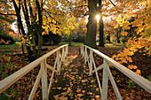 Brücke, Schlosspark im Herbst, Schlemmin, Mecklenburg-Vorpommern, Deutschland