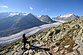View from Bettmerhorn to Aletsch Glacier, Canton of Valais, Switzerland