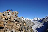 View to mount Eggishorn, Aletsch Glacier in background, Canton of Valais, Switzerland