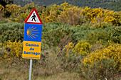 Signpost in remote landscape, Province of Leon, Old Castile, Castile-Leon, Castilla y Leon, Northern Spain, Spain, Europe