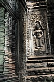 Relief of a Khmer Temple Dancer at Ta Promh Temple in Angkor