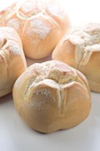 Tipycal Italian Bread, Michetta