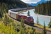 Alberta, Banff National Park, Bow River, Canada, Canadian Pacific Railway, Canadian rocky mountains, container, forest, freightliner, freight-train, Goods train, holiday, horizontal, locomotive, Morant's curve, mountain, north america, northern America, r