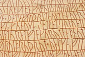 Sweden, Ostergotland, Rune stone of Rok 9th C The Rok Runestone is one of the most famous runestones featuring the longest known runic inscription in stone It It is considered the first piece of written Swedish literature