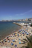 Beach life, view of in Summer, Costa Blanca, Benidorm, Province Alicante, Spain