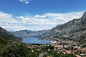 Blick auf die Hafenstadt Kotor, Bucht von Kotor, Montenegro, Europa