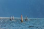 Windsurfer, Lake Garda, Trento, Italy