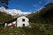 Hiking, Monte Rosa Massif, Alagna, Valsesia, Piedmont, Italy