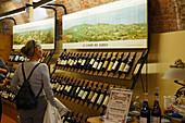 Wine Museum, Castello Falletti, Barolo, Langhe, Piedmont, Italy