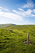Footpath near Alwinton Upper Coquetdale Northumberland England
