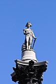 Nelson's Column, Trafalgar Square, London, England, UK