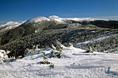 Appalachian Trail  Mount Eisenhower is in center, Mount Washington behind to right and Mount Jefferson is off to the left during the winter months Located in the White Mountains, New Hampshire USA