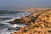 fishermen's huts perched upon cliffs around Tamri on Atlantic Coast, between Agadir and Essaouira, Morocco, North Africa