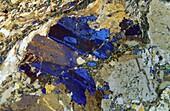 Gneiss rock Metamorphic rock The Costa Brava Gerona Spain Petrographic microscope