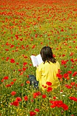 Reading a book with poppies