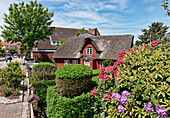 House at the Strunwai in Norddorf, North Sea Island Amrum, Schleswig-Holstein, Germany
