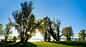 Afternoon  light on the west side of the Fraueninsel, Chiemsee, Chiemgau, Upper Bavaria, Bavaria, Germnay
