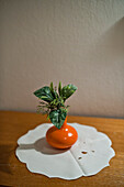 Vase with a plant, Munich, Bavaria, Upper Bavaria, Germany