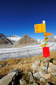Signpost above glacier Grosser Aletschgletscher with Aletschhorn, Grosser Aletschgletscher, UNESCO World Heritage Site Swiss Alps Jungfrau - Aletsch, Bernese Alps, Valais, Switzerland, Europe