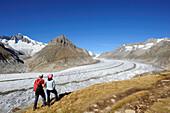 Couple looking towards glacier Grosser Aletschgletscher and Aletschhorn, Grosser Aletschgletscher, UNESCO World Heritage Site Swiss Alps Jungfrau - Aletsch, Bernese Alps, Valais, Switzerland, Europe