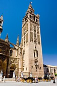 La Giralda, Cathedral of Seville, Andalusia, Spain