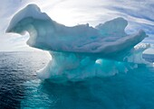 melting Arctic ocean ice in spring in Lancaster Sound, north west passage Nunavut, dark blue ice is usually glacial in origin and once part of much larger icebergs Some scientists believe that the Arctic could be ice free by 2050 due to impact of climate