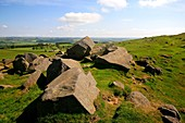 Roman Limestone Quarry, Hadrian's Wall, Northumberland, England