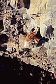 Tracey Weber rock climbing a route called Sanitary Landfill which is rated 5, 10 and located in The Alcove Area at Dierkes Lake Idaho USA