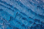 Glacial iceberg detail from ice calved off the Sawyer Glacier in Tracy Arm, Southeast Alaska, USA