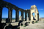 morocco, Archaeological site of Volubilis