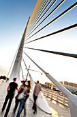Puente de l'Assut de l'Or, bridge that connects the south side with Minorca Street in the City of Arts and Sciences, Cuidad de las Artes y las Ciencias, Santiago Calatrava (architect), Valencia, Spain