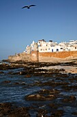 The walls od the fortified city of Essaouira, Morocco