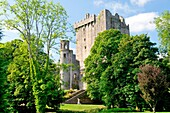 Blarney Castle, County Cork, Ireland Eire The Blarney Stone sits in the battlements at the top of the castle keep