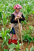 Flower Hmong woman working in field, Bac Ha - near, Vietnam