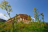 Temple of Segesta, near Calatafimi-Segesta, Sicily, Italy