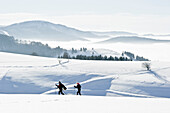 Two persons snowshoeing at mount Schauinsland, Freiburg im Breisgau, Black Forest, Baden-Würtemberg, Germany