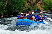 Gunnison, White Water rafting am Taylor River, North America, America