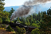 Durango-Silverton Narrow Gauge Railroad, La Plata County, Colorado, USA, North America, America