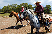 Zapata Ranch is a working ranch where tourists can stay and work, Alamosa, Alamosa County, Colorado, USA, North America, America
