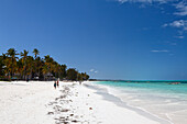 Sandy beach in the sunlight, Jambiani, Zanzibar, Tanzania, Africa