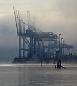 Seaport Cranes in Fog, Portland, Oregon, USA