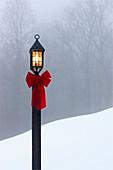 Lamppost in Snow, Hendersonville, North Carolina, USA