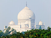 Domed Roofs of the Taj Mahal, Agra, Uttar Pradesh, India