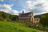 Cloister Himmerod, Baroque, Eifel, Rhineland-Palatinate, Germany, Europe
