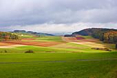 Agriculture, near Alendorf, Eifel, North Rhine-Westfalia, Germany, Europe