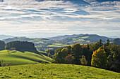 Idyllic landscape in the sunlight, Black Forest, Baden-Wuerttemberg, Germany, Europe