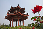 Pavilion at The Giant Wild Goose Pagoda Da Yanta near Xi'an, Shaanxi Province, People's Republic of China