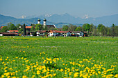 Benediktbeuern with convent and farmhouses, Ammergauer Alps range in background, Benediktbeuern, Upper Bavaria, Bavaria, Germany, Europe