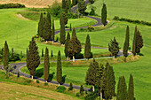 Country road with cypresses, Tuscany, Italy, Europe