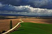 Hügellandschaft, Crete Senesi, Toskana, Italien